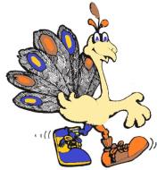 Peacock Strut