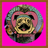 Pacific Pug Rescue's Second Annual Virtual Pug Run