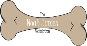 Noah James Foundation