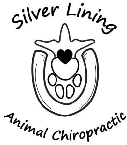 Silver Lining Animal Chiropractic