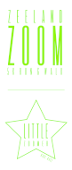 2017 Zeeland Zoom 5k