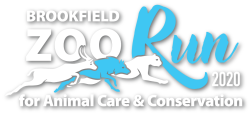 2020 Brookfield Zoo Run