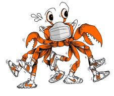 Camano Crab Dash - Virtual Edition