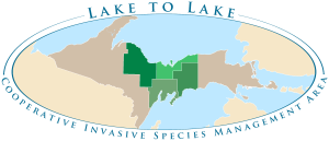 Lake to Lake Cooperative Invasive Species Management Area