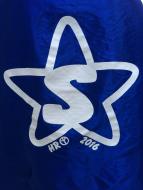 Harlyn Radley Memorial Race ~ Sonoma Superhero 5K