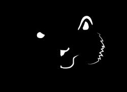 Henry Vilas Zoo Run Run 2018