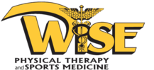 Wise Physical Therapy & Sports Medicine