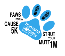 5K Paws for a Cause and 1M Strut your Mutt