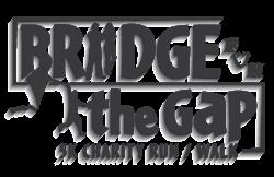 Bridge the Gap 5K