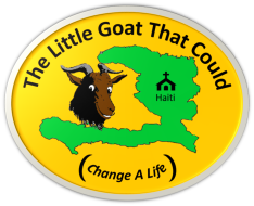 The Little Goat That Could