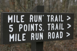 Mile Run Trail Challenge