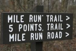 Mile Run Trail Challenge