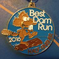 WFRC Virtual Dam Run