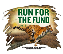 Busch Gardens, Tampa:  Run For The Fund 5K