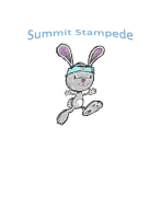 Summit Stampede 5k and Fun Run