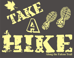 Take a Hike on the Falcon Trail