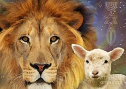 Run with the Lions & Walk with the Lamb