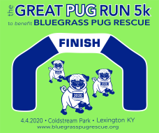 The Great Pug Run 5K VIRTUAL