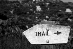 Hoppy Trails, Winter #2