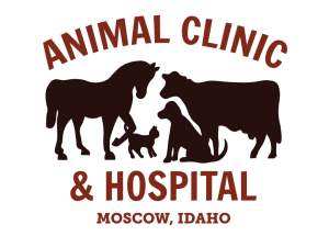 Animal Clinic & Hospital