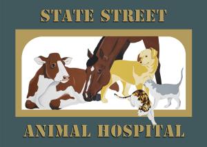 State Street Animal Hospital