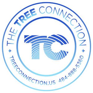 The Tree Connection