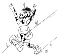 Dairyfest Stampede