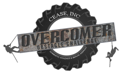 Overcome Obstacle Challenge