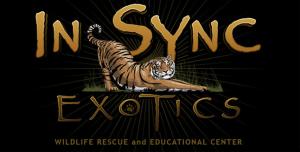 In-Sync Exotics
