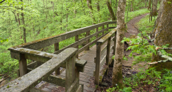 JRWS Spring Trail Runs: Raven Run 4/9