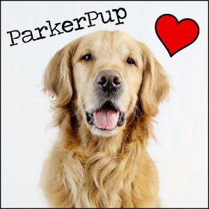 ParkerPup