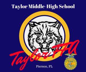 Taylor FFA
