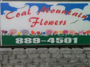 Coal Mountain Flowers