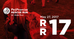 PetPromise Rescue Run presented by Bark & Co