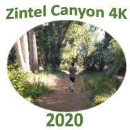 Zintel Canyon 4K