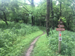 JRWS Summer Trail Series: Capitol View Park, 6/4