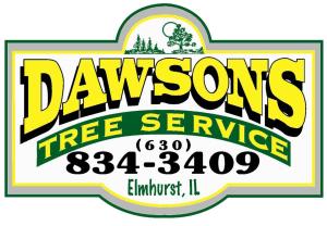 Dawson Tree Services