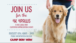 4K 4 Paws benefiting Animal Friends and Bow Wow Buddies