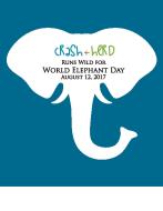 crash+herd Runs Wild for World Elephant Day (Virtual Race)