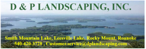 D & P Landscaping
