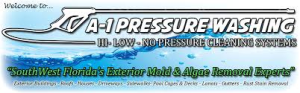 A-1 Pressure Washing & Roof Cleaning