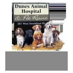 Dunes Animal Hospital