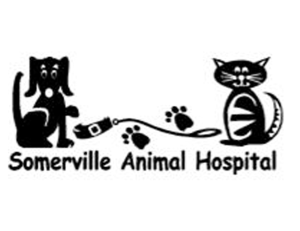 Somerville Animal Hospital