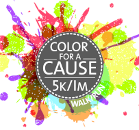 Color For A Cause 5K / 1M Run