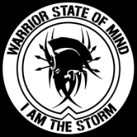 Warrior State Of Mind