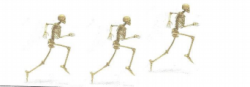 Skeleton Skurry