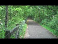 GREENWAY TRAIL GRIN & BEAR IT HALF MARATHON /10K / 5K
