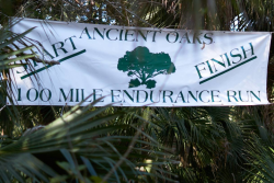 Ancient Oaks 100-Mile Endurance Run