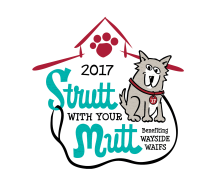 Pup Up Group Run With Your Mutt in Brookside!