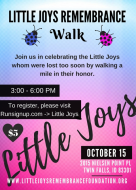 Little Joys Remembrance Walk - Twin Falls